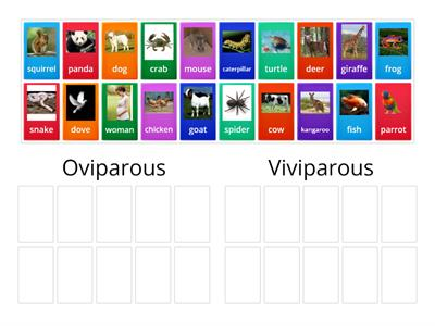 Viviparous and Oviparous
