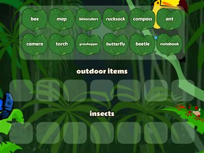 insects and outdoor items