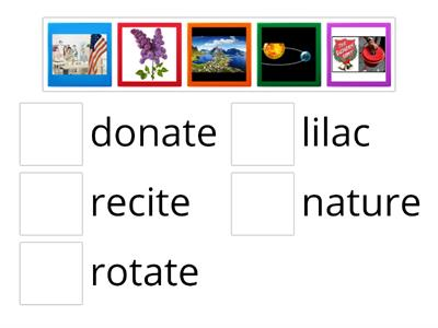 Open Syllables Picture Match