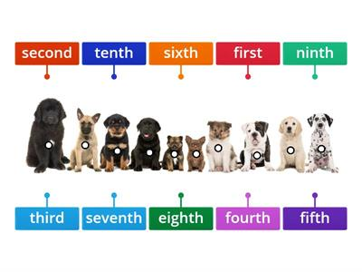 Labelled diagram Ordinal Numbers 1st-10th