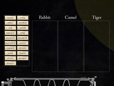 Rabbit, Tiger, Camel Review for Griffin