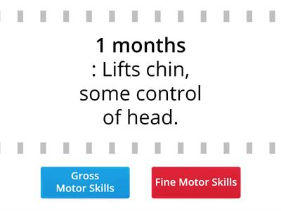 Gross & Fine Skills: Developmental Milestones