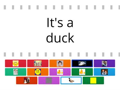 The grey duck story