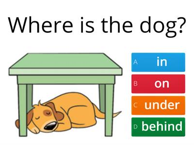 Prepositions - in on under behind