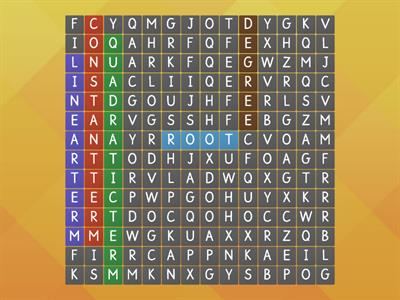 Wordsearch - Quadratic Equations