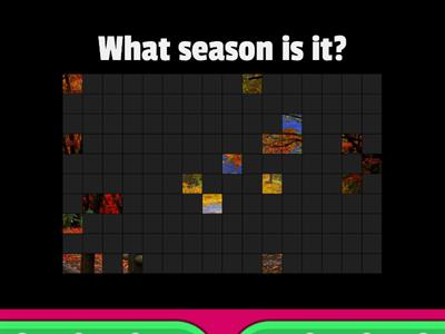 There are 4 seasons in a year
