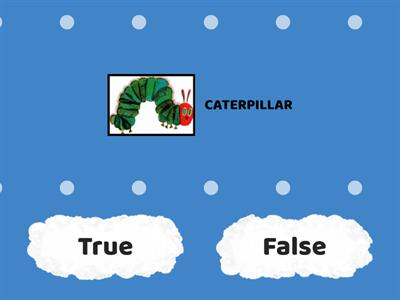 VERY HUNGRY CATERPILLAR TRUE/FALSE