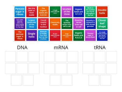 8.3 Structure of RNA sort