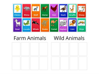 UAE Farm Animals
