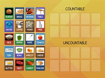 UNCOUNTABLE AND COUNTABLE NOUNS