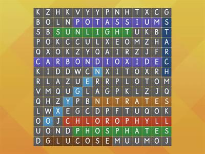 Plants wordsearch