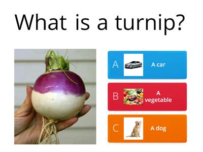 The Enormous Turnip Quiz
