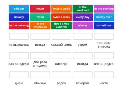 Adverbs of Frequency +