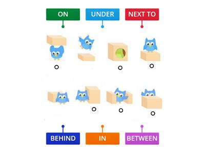Owl's Prepositions of place