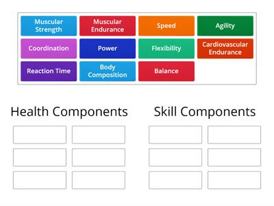 Classify Fitness Components