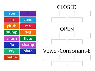 Wilson Reading Syllable Sort- C/V-E/O