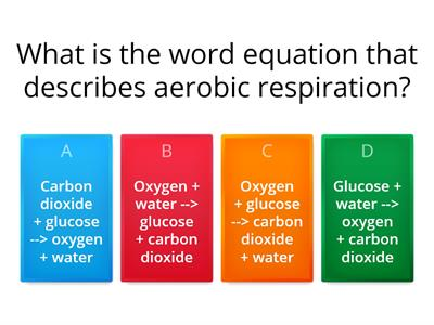 Aerobic respiration and response to exercise quiz