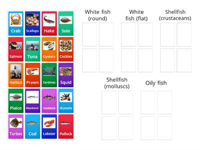 Types of Seafood (GCSE Food and Nutrition)