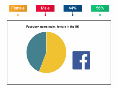 Facebook users UK