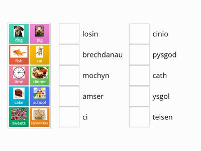Match up Welsh vocab