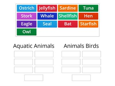 05-06_Animals_Aquatics+Birds