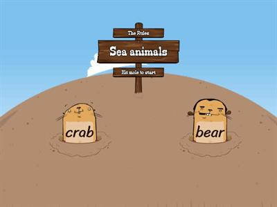 Animals. Under the sea