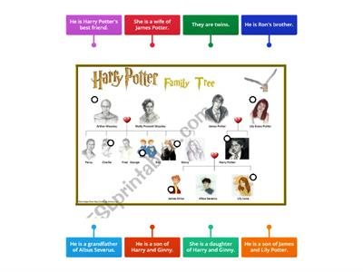 Harry Potter family tree