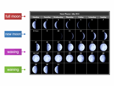 Basic phases of the moon