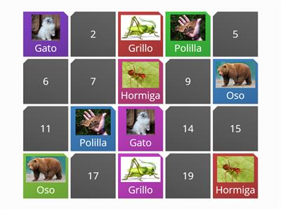 Spanish animals matching pairs