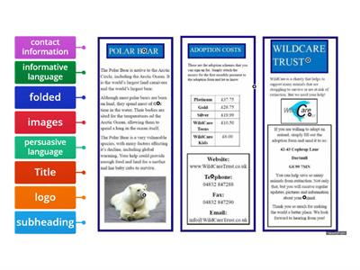 Features of a Leaflet (Labelling)