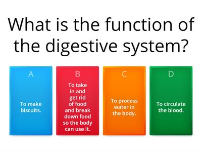 Digestive system, teeth and food chains