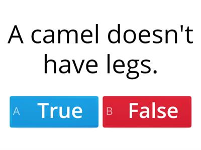 Animals ( true or false)