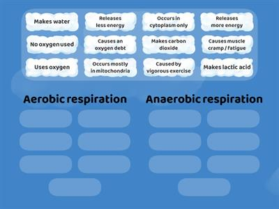 Aerobic vs Anaerobic respiration