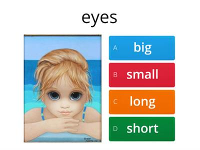 big/small/long/short