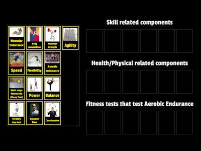 Btec Components of Fitness