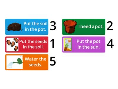 How to plant a seed.