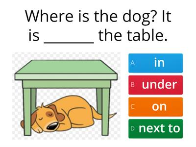 Prepositions (in-on-under-next to-behind)
