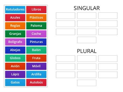 Copy of Singular y Plural RASI 1