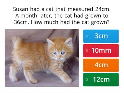 Measurement word problem quiz