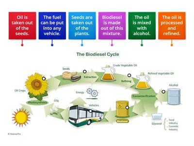 Unit 14 Biodiesel Production Process