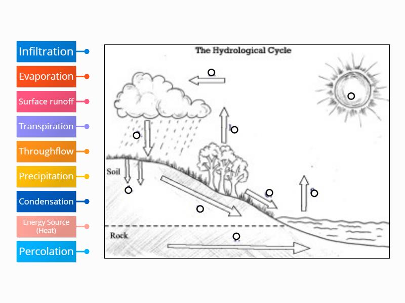 Water    Cycle     Labelled    diagram