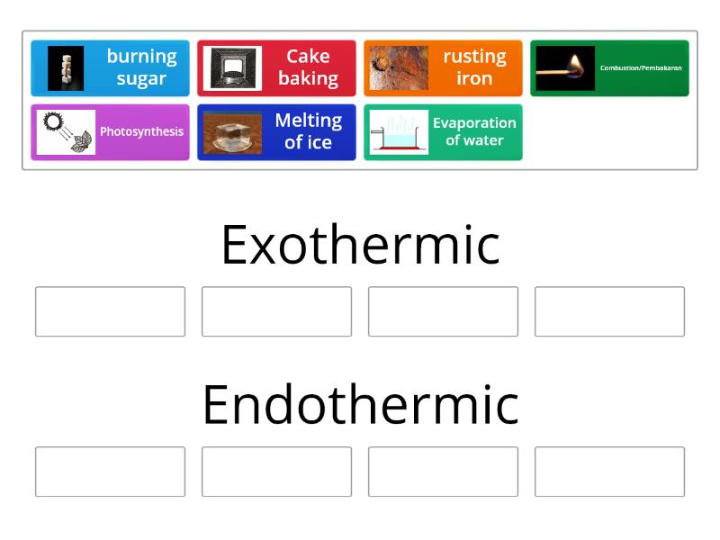 Endothermic And Exothermic Reaction Group Sort